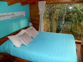 Las Nativas | Cabana rodeada de bosque nativo