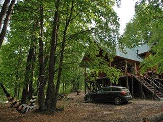 Casa Alto Palguin Pucon Hermosa Cabaña en el Bosque
