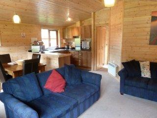 ASH LODGE - BIRCH, wi-fi, sauna, private parking. RefL 973055