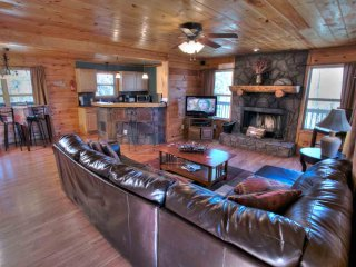 Living with Leather Furnishings