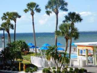 Relaxing Waterfront near Airport, Downtown, Clearwater & USF