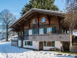 Gorgeous Swiss Chalet with amazing views! 5 adults & 1 baby, many amenities!