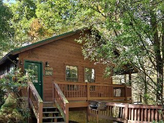 Private Cabin within 10 minutes to Gatlinburg Downtown