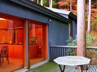 Japan Tokyo Kanagawa Hakone vacation Hotspring Onsen Villa
