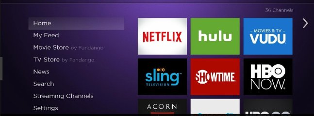 Roku installed in in the smart TV