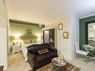 #154165 Luxury Studio Apartment - DTLA view