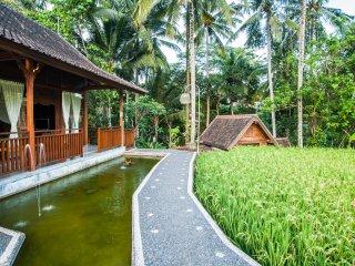 4BR Villa Tirta Padi Ubud ricefield view