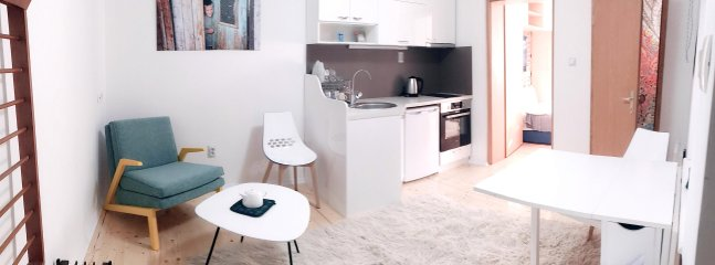 Living room / kitchen / dining table with entrance