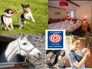 Swallows Nest Cottage-Superb 4 Star Accommodation set in glorious countryside