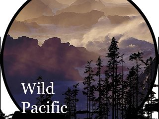 Wild Pacific Retreat by Natural Elements Vacation Rentals