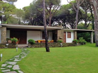 Villa Monte - Pine forest of Roccamare