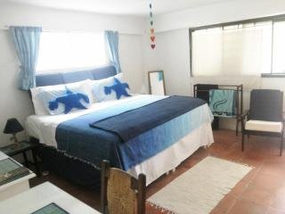 Ecofriendly Organic B&B/Self-catering Palmetto Apt, Ferienwohnung in Bridgetown