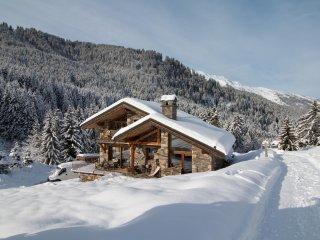 Cosy/Unique Appartement Ski au pied/Ski in Ski out