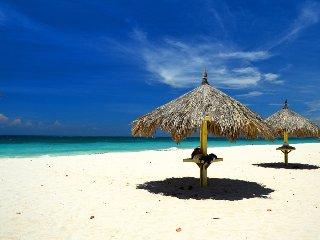 DREAM CONDO WALK TO EAGLE BEACH !