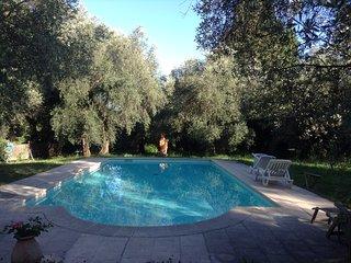 MAS CALADOU Site exceptionnel.Oliveraie,piscine,calme, proche tous commerces,4ch