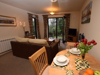 49492 Apartment in Skelwith Br