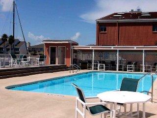 Dog-friendly studio condo w/ shared pools, near popular attractions!