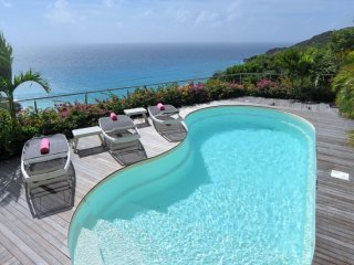 Villa Gouverneur Cliff (Offers A Panoramic View On Gouverneur Bay And The Ocean.