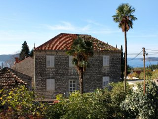 Comfortable and spacious house Trsteno, Dubrovnik (K-2118)