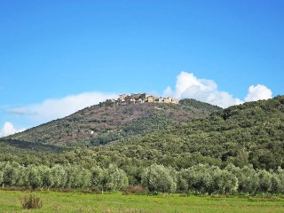 4 bedroom Apartment in Roccatederighi, Tuscany, Italy : ref 5447021