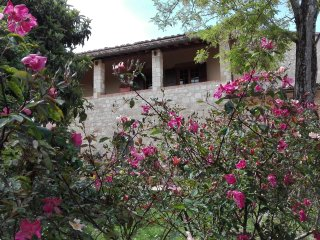 1 bedroom Villa in Colle di Val d'Elsa, Tuscany, Italy : ref 5401895