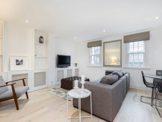2 Bed in Waterloo / Westminster Near Big Ben