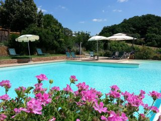 3 bedroom Apartment in San Giovanni d'Asso, Tuscany, Italy : ref 5241882