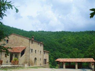 13 bedroom Villa in Sansepolcro, Tuscany, Italy : ref 5227148