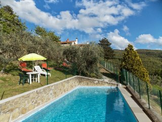 4 bedroom Villa in Londa, Tuscany, Italy : ref 5226973