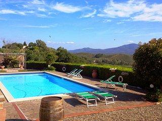 6 bedroom Villa in Roccastrada, Tuscany, Italy : ref 5226710