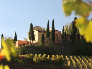 2 bedroom Apartment in San Gimignano, Tuscany, Italy : ref 5218488