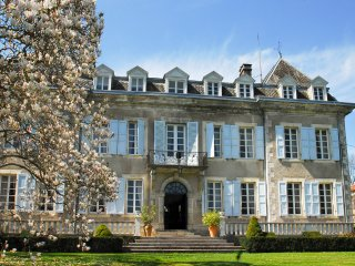 9 bedroom Chateau in Rieucazé, Occitania, France : ref 5049478