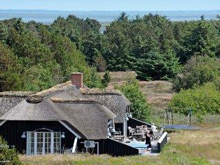 9 bedroom Villa in Sønderho, South Denmark, Denmark : ref 5041980