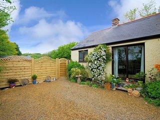 TINST Cottage in Camborne
