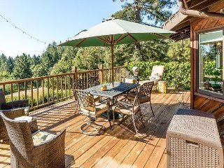 3BR Mountain Side home with Vista Views of the Pacific