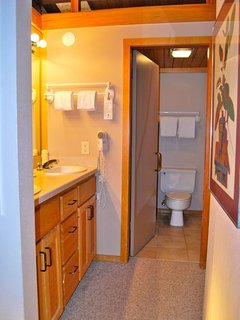 Master bathroom with double sinks and separate room w/toilet and bathtub