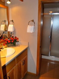 Guest bath with separate shower/toilet room