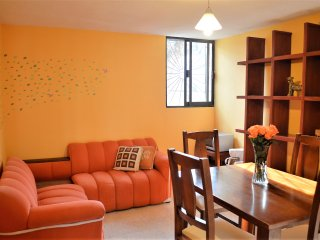 Lovely Coyoacan Apartment near UNAM