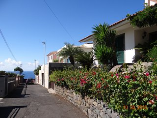 Sea view villa near beach. Summer infinity effect plunge pool. Funchal location.