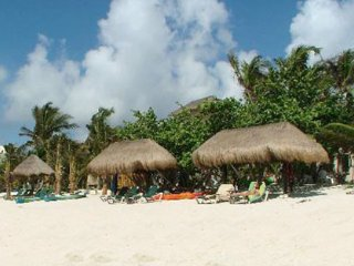 Beautiful Tropical Evergreen - Soliman Bay, Tulum - Guest House ONLY