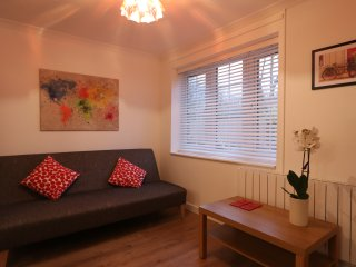 Comfortable, quiet house, ideal for hospital and central Cambridge