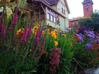 Nelson Garden Sanctuary