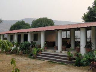 Chinkara Ranthambore 4