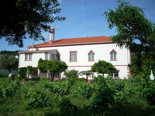 Spacious, Quiet Apartment with Vineyard View, Serra Sao Mamede Natural Park