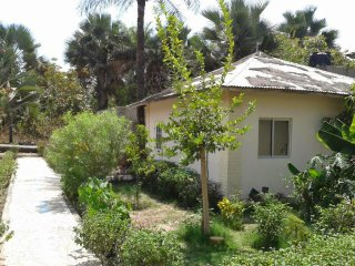 Dalaba Eco-Lodge 1st (Single Room)