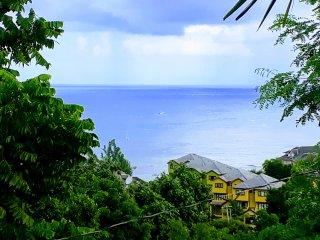 Coconut Palms, Deluxe Ocean View Villa!