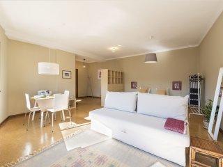 Santa Catarina Light Apartment (N46)
