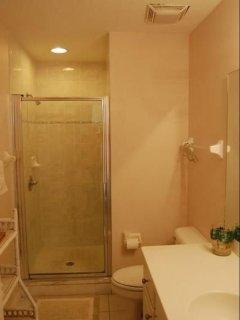 guest upstairs bath