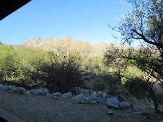 Majestic Catalina Mtns-Bike-Hike and Golf at your back Door