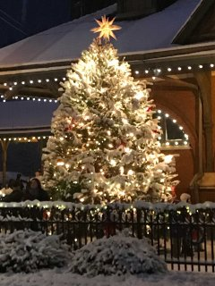The Christmas tree is Historical Jim Thorpe in front of the train station!